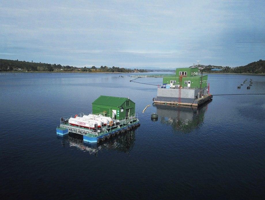 La tecnología se implementó hace más de un año en la empresa Salmones Aysén. Foto: Gasco.
