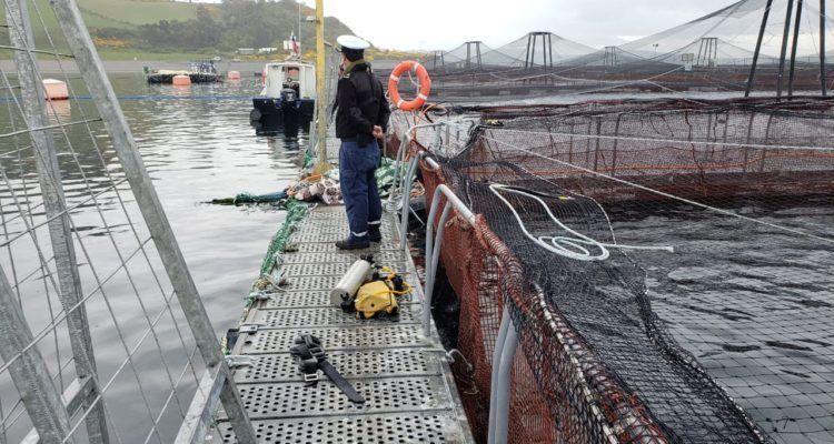 El buzo trabajaba para la empresa Escafandra SPA, prestadora de servicios a Invermar. Foto: Radio del Mar.