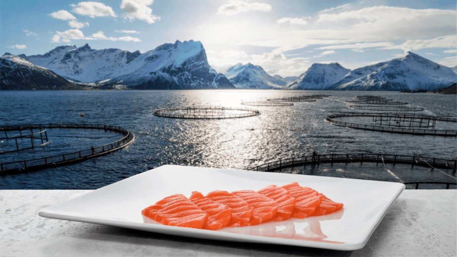 Norwegian salmon exports increased by 6% in volume and 7% in value last year.