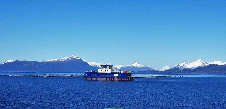 Centro de cultivo de salmónidos en la región de Magallanes. Foto: Blumar.