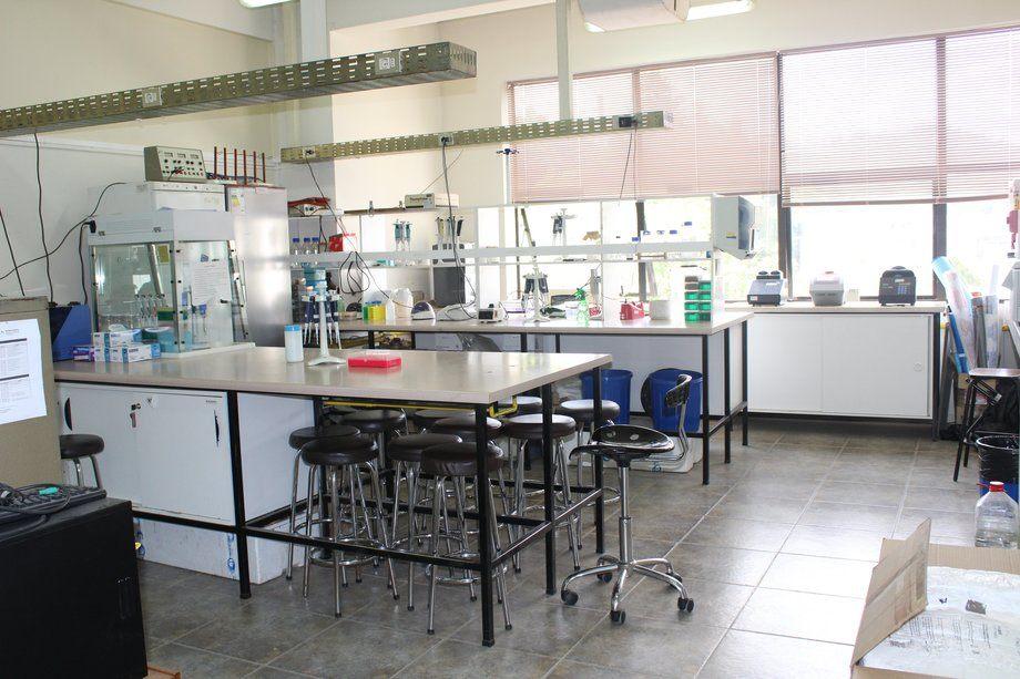 Laboratorio Acuigen de la Universidad de Concepción, casa de estudios que lidera proyecto FIPA de acuicultura genéticamente modificada. Foto: Universidad de Concepción.