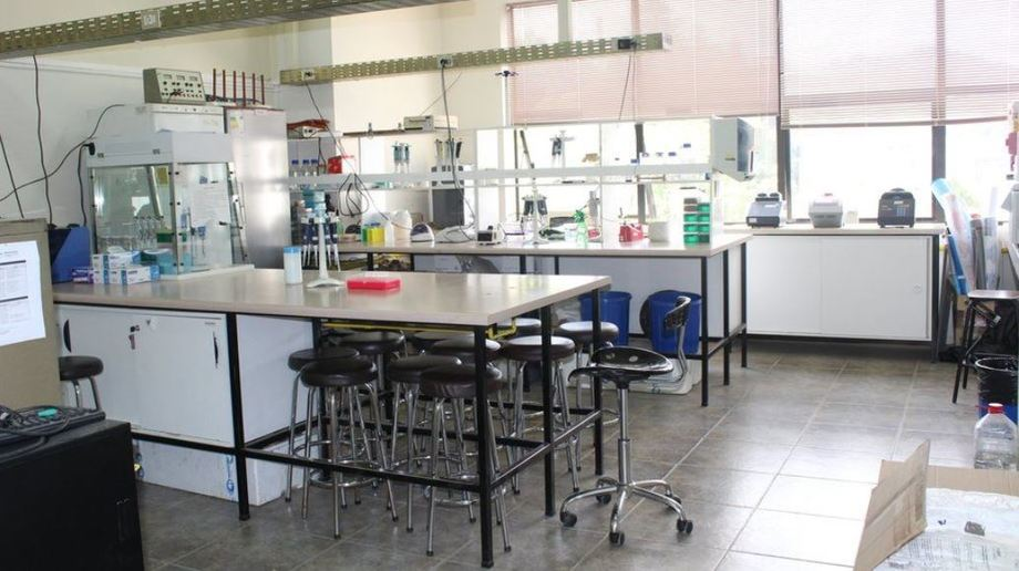 Acuigen Laboratory of the University of Concepción, which leads the FIPA project on genetically modified aquaculture. Photo: Udec.
