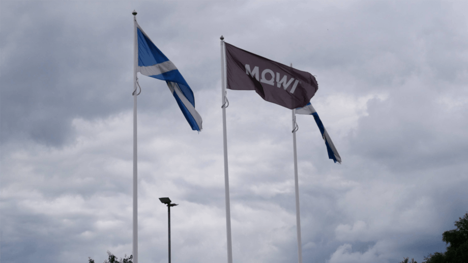 Mowi Scotland harvested an extra 2,200 gwt in Q4 2019 compared to the same period the year before, but operational EBIT per kilo fell.