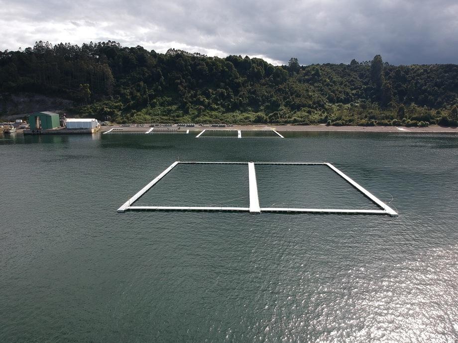 Jaula para acuicultura oceánica de 80 x 80 metros. Foto: Walbusch.