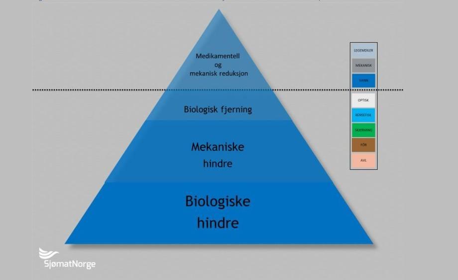 «Den blå trekanten» illustrerer ulike tiltak for å kontrollere lakselus på merdnivå. Hentet fra tiltaksveilederen.