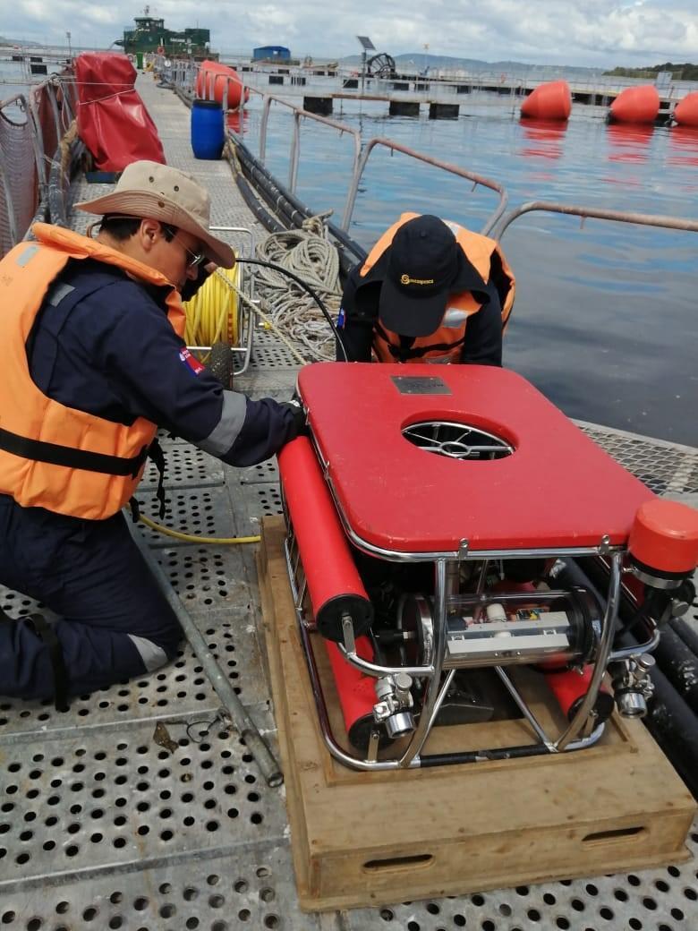 Fiscalización a centro de cultivo de Salmones Antártica. Foto: Sernapesca.