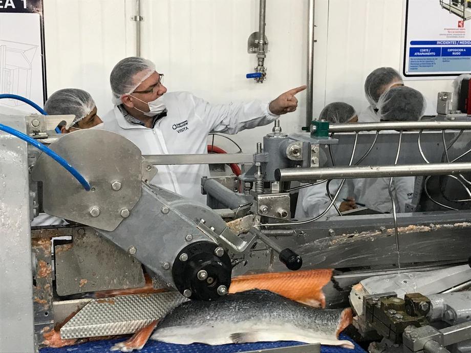 Seremi del Trabajo de Los Lagos, Fernando Gebhart, en visita a una planta de procesos de salmón. Foto: Seremi del Trabajo de Los Lagos.