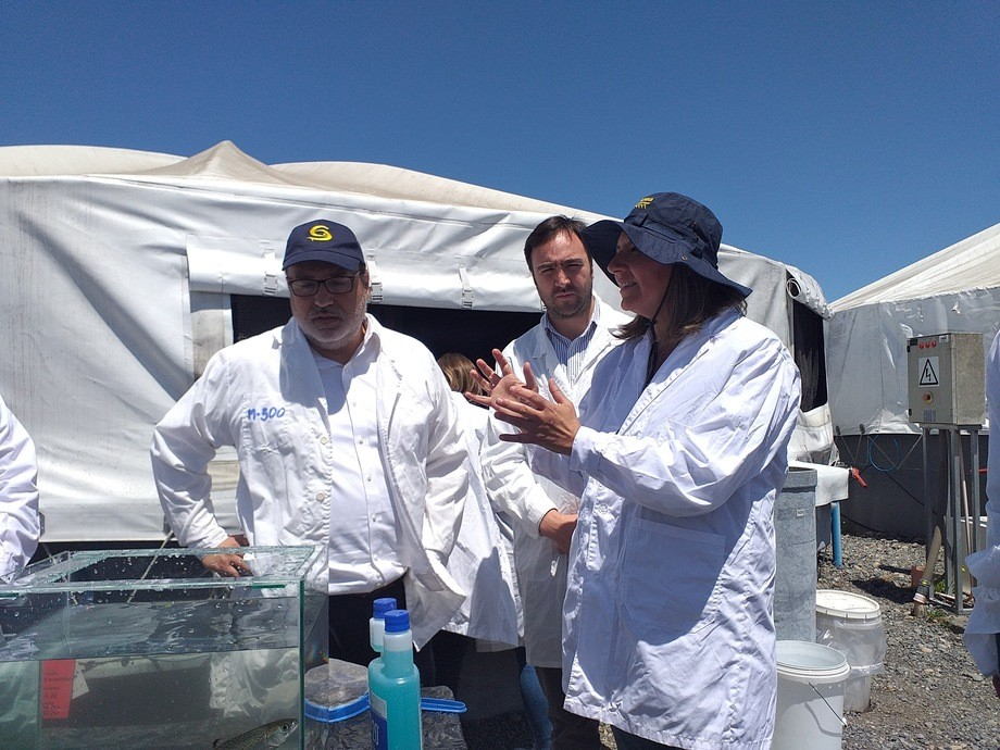 Autoridades sectoriales en visita a piscicultura de Cermaq. Foto: SalmonChile.