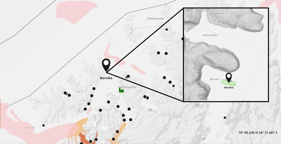 Det er meldt inn en ny rømming meldt ved lokalitet Borvika. Anlegget tilhører Salmar Farming AS. Finnmark. Kilde Barentswatch