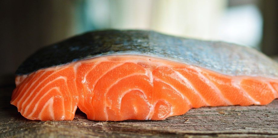 Se puede ayudar a reducir la brecha entre la oferta y la demanda de ácidos grasos DHA y EPA al comer menos salmón, señala estudio. Foto: Pixabay.