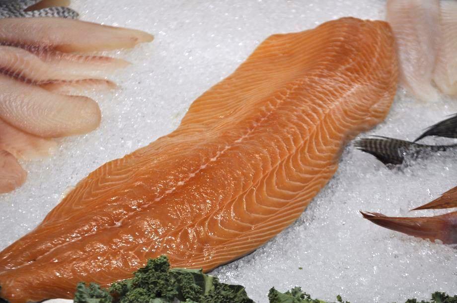 Foto: Salmonexpert.