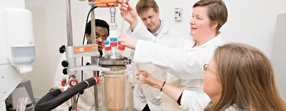 Investigadores de Nofima aportan a proyecto en el proceso de hidrólisis enzimática. Foto: Nofima.