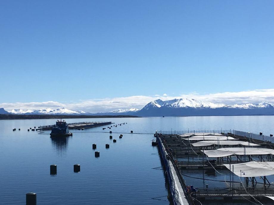 Centro de cultivo de Salmones Blumar en la región de Magallanes. Foto: Salmones Blumar.