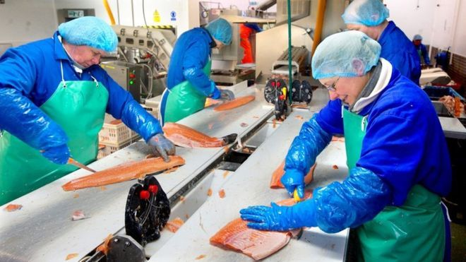Workers at Aquascot, where 55% of the employee-owned firm's 'partners' have migrated from the EU. Photo: BBC.