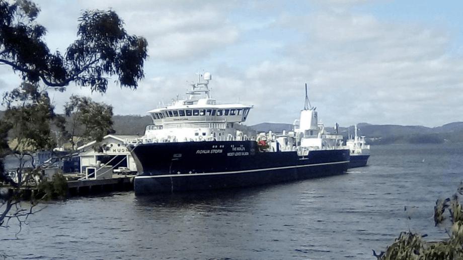 Ronja Storm, avbildet i Port Huon i Tasmania, har nylig satt enda en rekord. Foto: Huan Aquaculture.