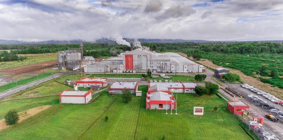 El proyecto se ejecutó en la planta Chiloé de Salmofood. Foto: Archivo Salmonexpert.