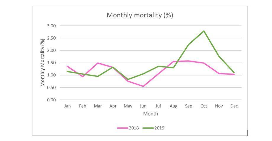 Promedios mensuales de mortalidad para 2018 y 2019. Gráfico: SSPO.