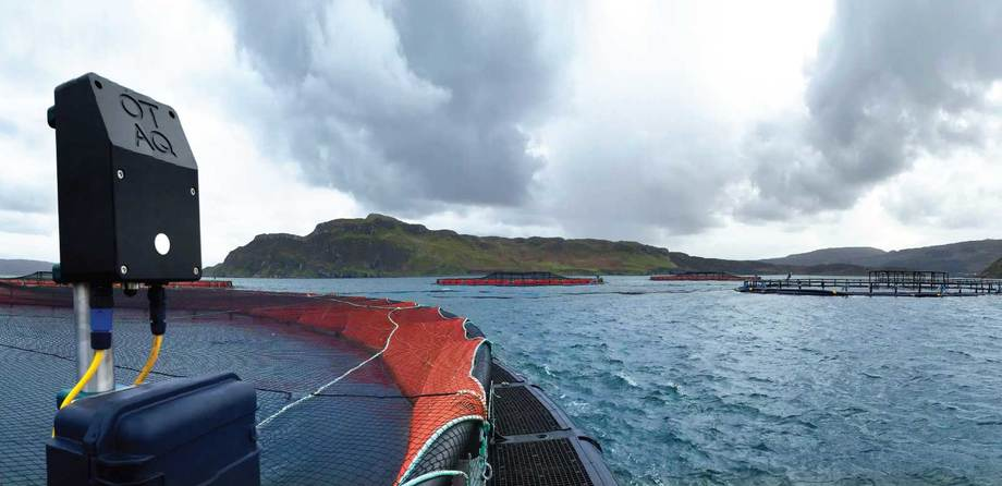 OTAQ's acoustic deterrent devices are used by salmon farmers in Scotland, Chile and elsewhere to deter seals and sea lions. Photo: OTAQ.