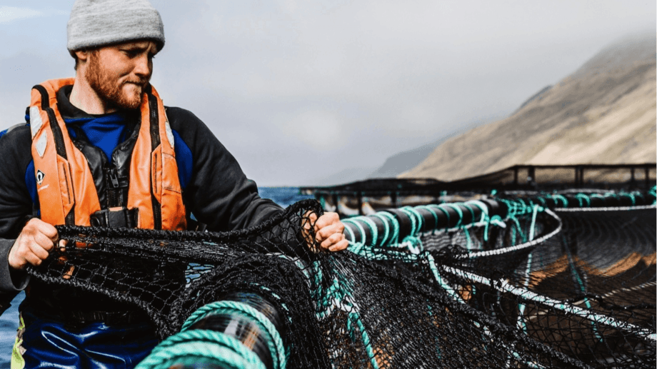 The Open Farm initiative would have given more people the chance to see salmon farmers at work. File photo: Scottish Sea Farms.
