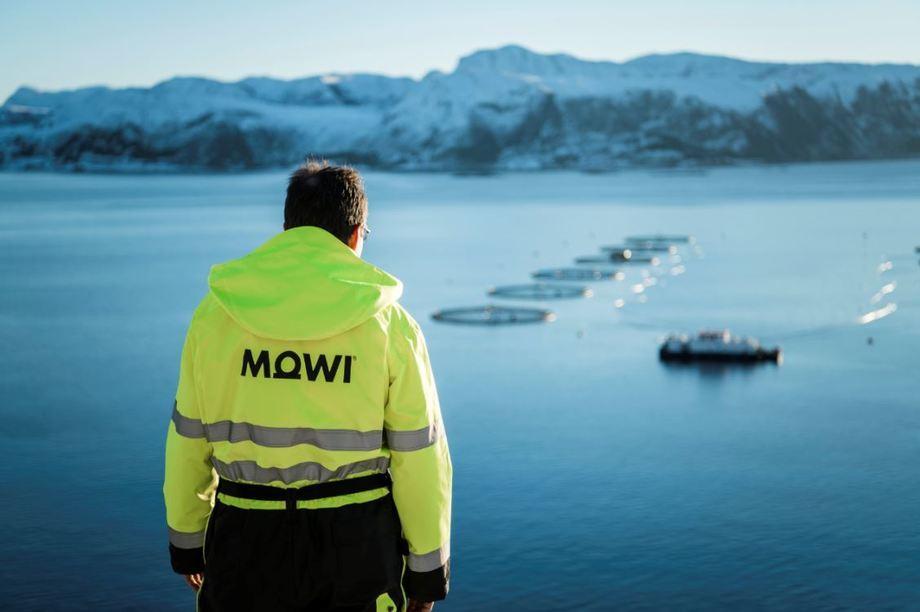 Durante 2019, la compañía internacional cosechó 435.904 toneladas de salmónidos. Imagen: Mowi.