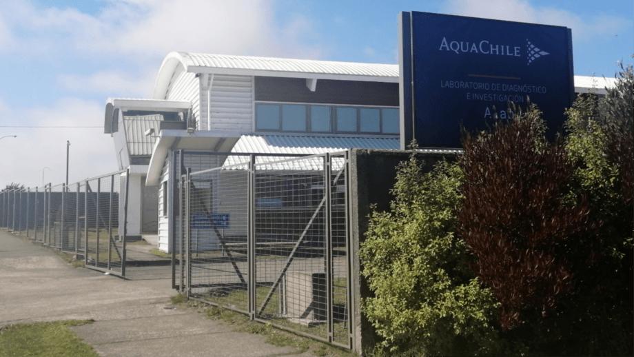 AquaChile's Alab laboratory will be used for coronavirus testing from Monday. Photo: AquaChile.