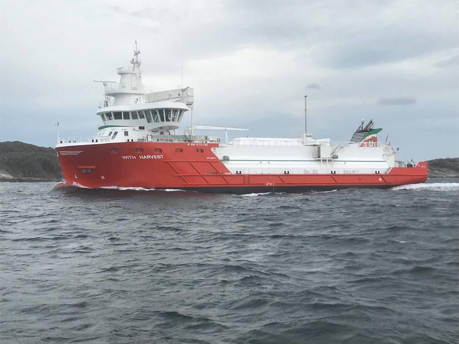 IMO griper inn for å sikre skipstrafikken. Foto: Sigbjørn Larsen
