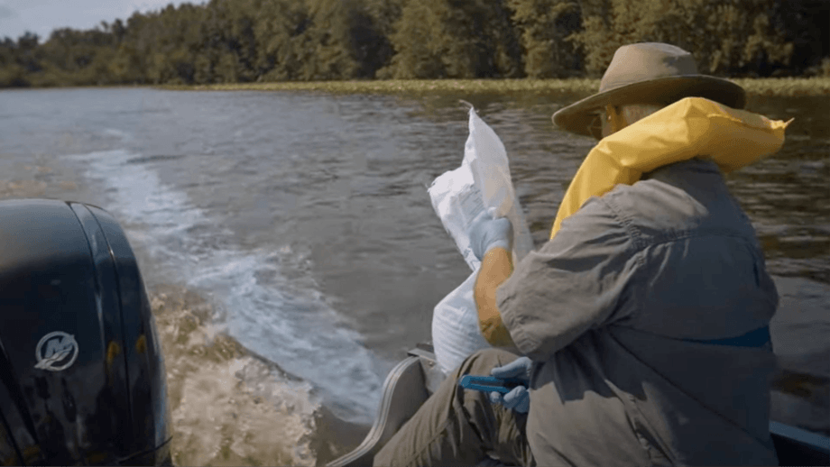BlueGreen Water Technologies' Lake Guard is applied to Chippewa Lake, a 330-acre recreation and fishing water body in Medina County, Ohio. The company said all toxic algae was killed within 24 hours. Image: BlueGreen video.