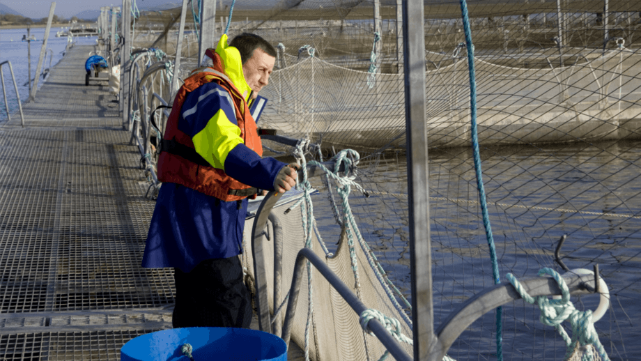 Malcolm Johnstone, aquaculture manager for RSPCA Assured, at a fish farm before the Covid-19 lockdown. Photo: RSPCA Assured.