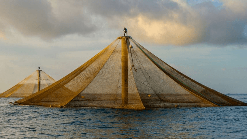 An offshore Innovasea Seastation cage. US aquaculture needs better regulation to allow growth, says the AFS. Photo: Innovasea.