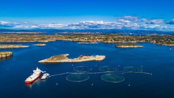 Nettverk fjord- og kystkommuner (NFKK) er fornøyd med produksjonsavgiften. Foto: NFKK.