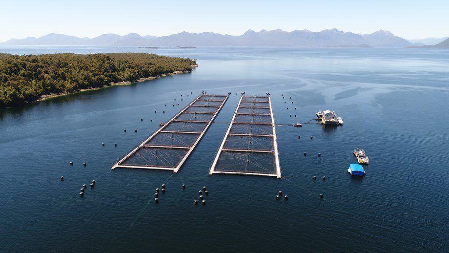 Iniciativa busca fomentar el desarrollo de las empresas proveedoras de la salmonicultura en Aysén. Foto: Archivo Salmonexpert.