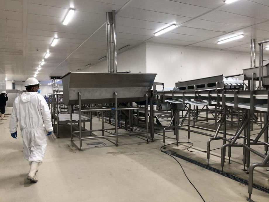 La planta de proceso de salmónidos Entrevientos se apronta para iniciar operaciones. Foto: BluRiver.