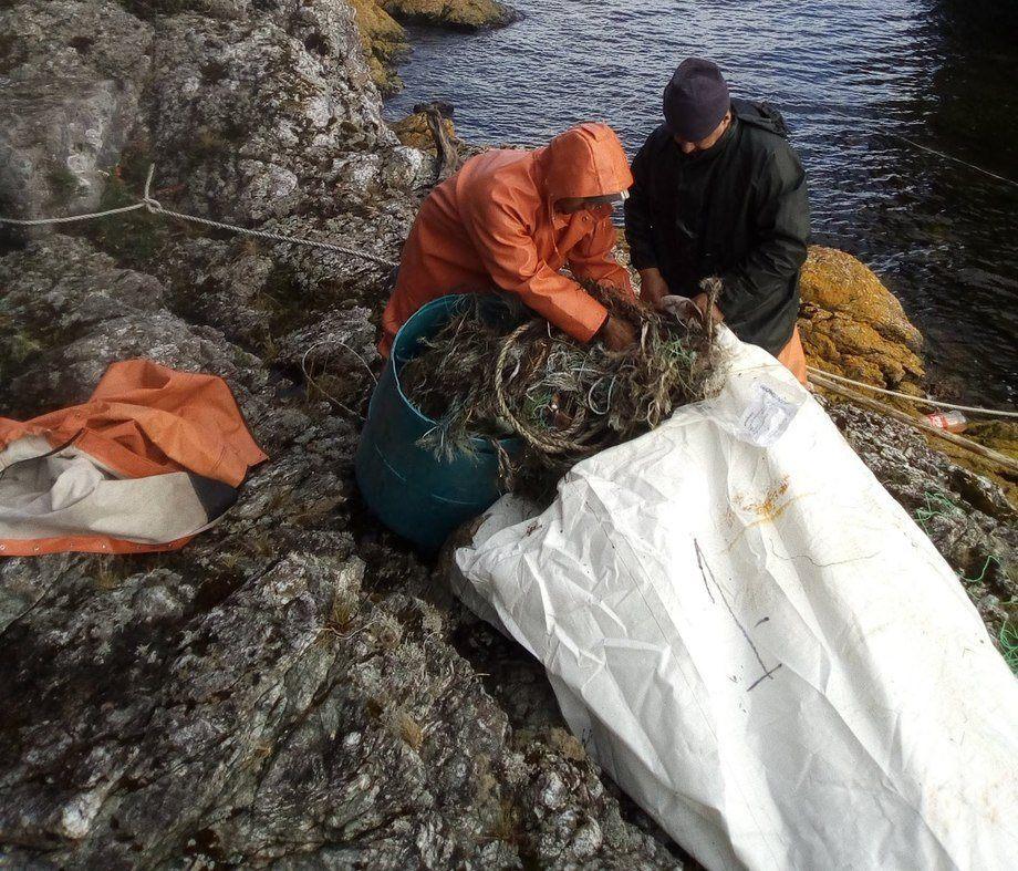 Proyecto ganador busca disminuir residuos plásticos de limpiezas de playas. Foto: Archivo Salmonexpert.
