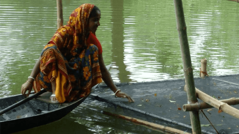 A fish farmer checks on her tilapia. Photo: Worldfish on Visualhunt / UN FAO.