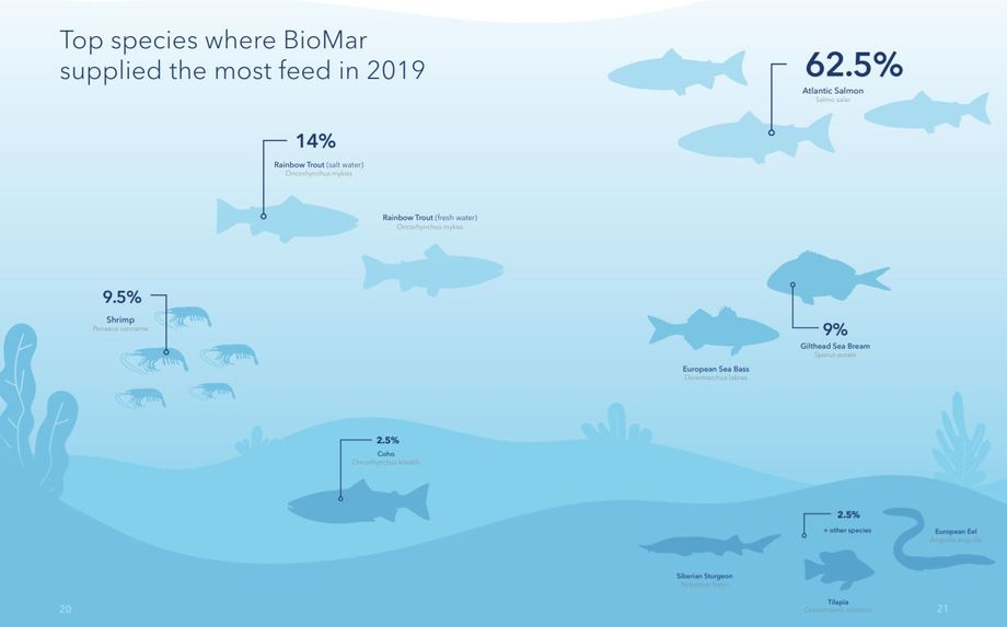 Nearly two thirds of BioMar's business was provided by the salmon industry. Graphic: BioMar.