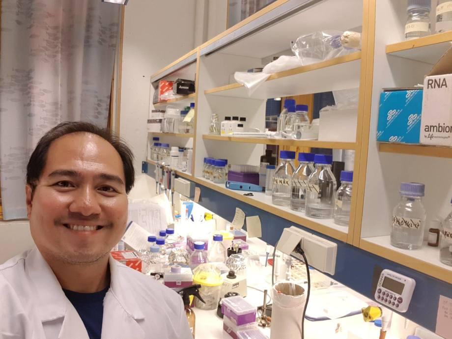 Postdoktor Dennis B. Bela-Ong på laben. Foto: Privat.