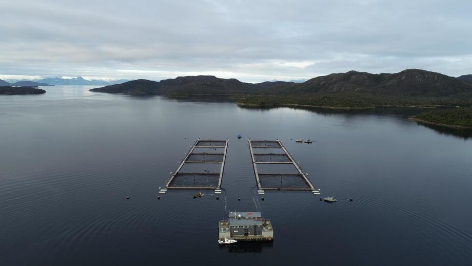 Centro de cultivo de salmón chileno. Foto: Mowi Chile.