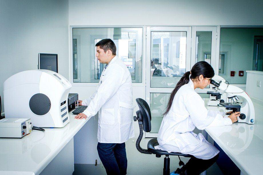 Fish Vet Group har hovedkontor i Inverness (Skottland) med tilhørende diagnostiske laboratorier der, samt i Norge, Irland og Chile. Illustrasjonsfoto: Benchmark.