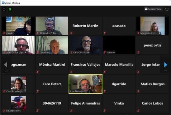 El encuentro se realizó a través de Zoom. Imagen: Mevea Chile.
