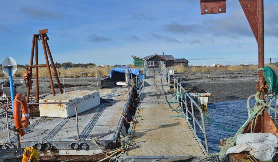 Instalaciones de cultivo de salmones y mitílidos presentaba múltiples irregularidades. Foto: SMA Magallanes.