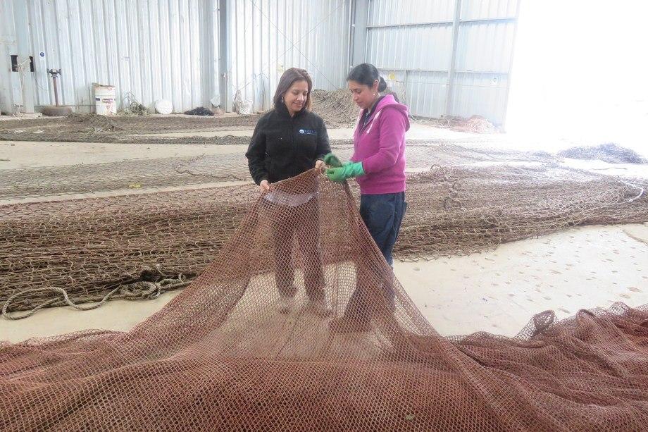 A la izquierda, la gerente de Redes de Aysén, Jenny Bórquez, junto a la trabajadora Ximena Cárcamo. Foto: Jonathan Garcés, Salmonexpert.