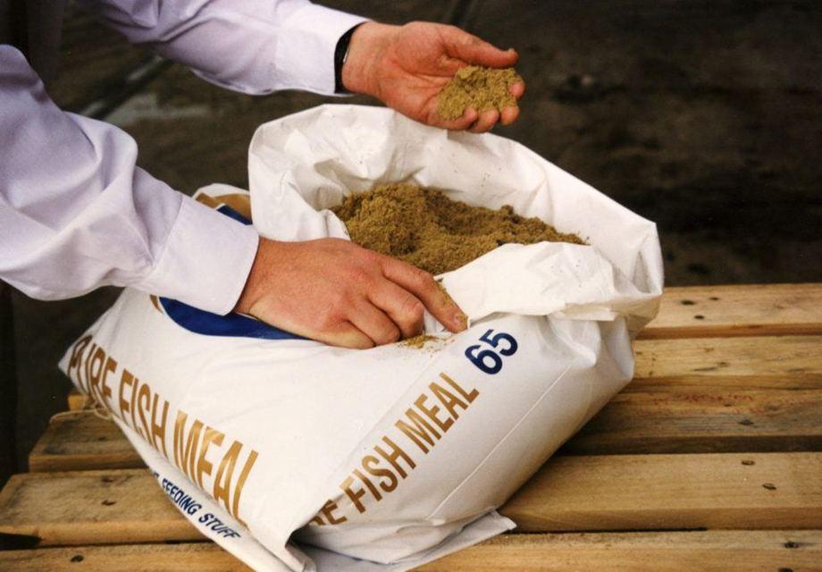 Imagen referencial de harina de pescado. Fuente: GAA.