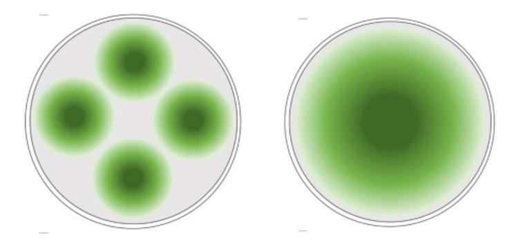 Illustrasjon av lysspredning i en 160 m merd med hhv. 4 små lys (á 600 W) og ett stort lys (2500 W). Illustrasjon: Havforskningsinstituttet og OxyVison