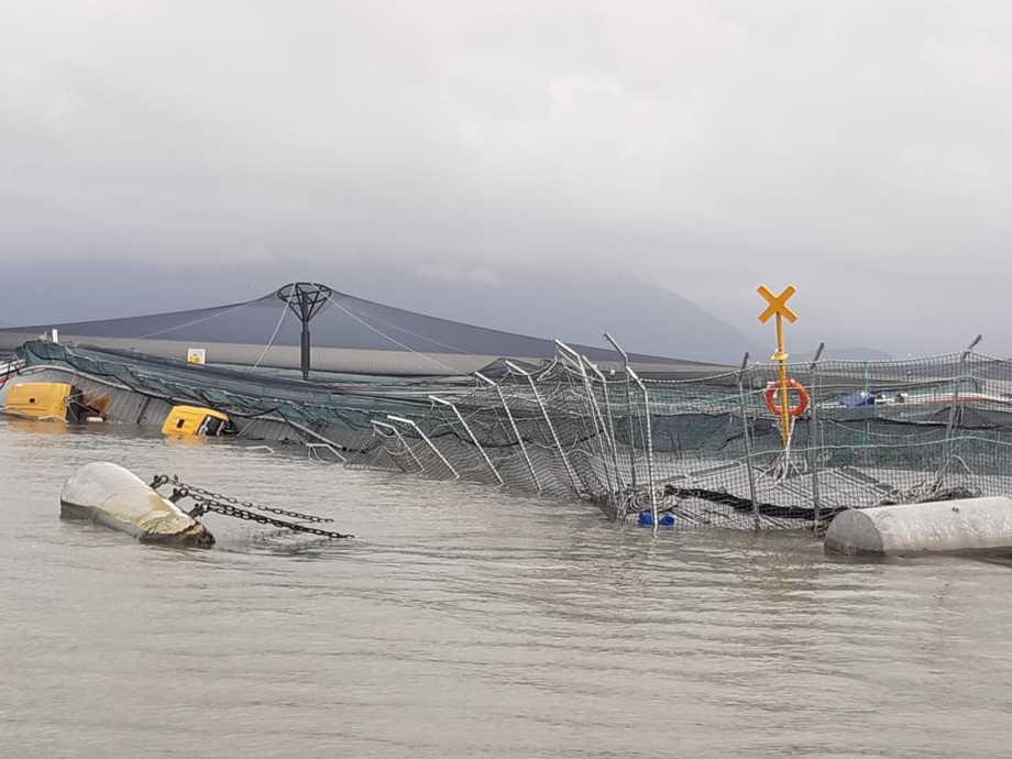 Centro de cultivo afectado por temporal, con posterior escape masivo de salmones. Foto: Directemar.