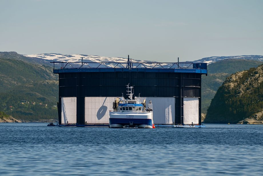 Aquatraz es una jaula semicerrada desarrollada por Midt-Norsk Havbruk, que está explorando una posible fusión con NRS. Foto: MNH.