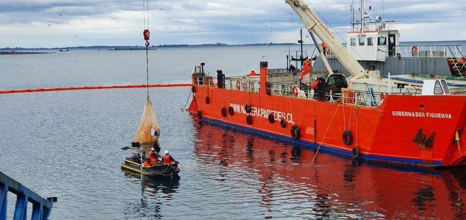 Trabajos de recuperación de maxisacos hundidos tras colapso del muelle de carga Cabo Froward. Foto: Autoridad Marítima.