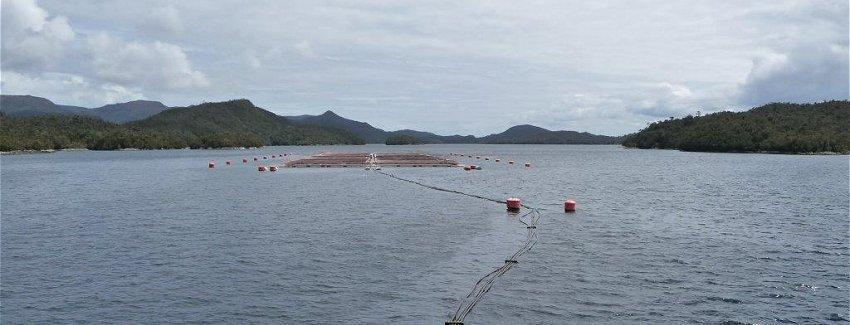 Centro de cultivo de salmónidos. Foto: Sernapesca.