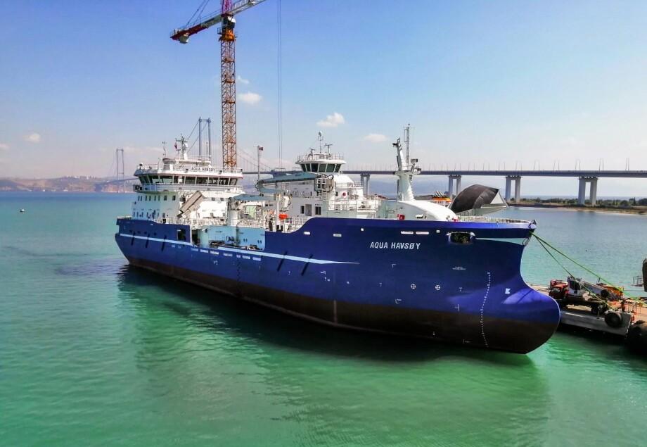 «Aqua Havsøy» er den fjerde identiske brønnbåten Sefine Shipyard leverer til Dess Aquaculture. Ytterligere to skal leveres senere. Foto: Sefine Shipyard