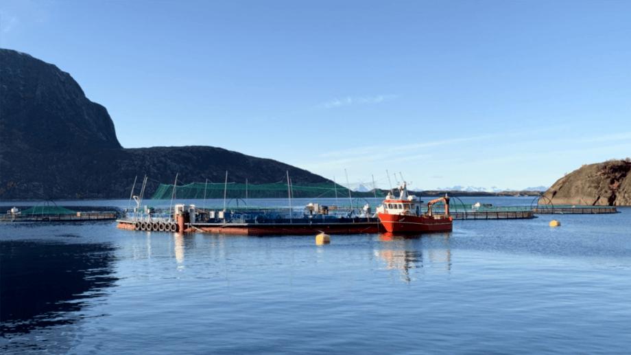 Et Fiizk semi-lukket system i Norge er en av to leverandører som blir vurdert av LLS i Skottland. Foto: Fiizk.