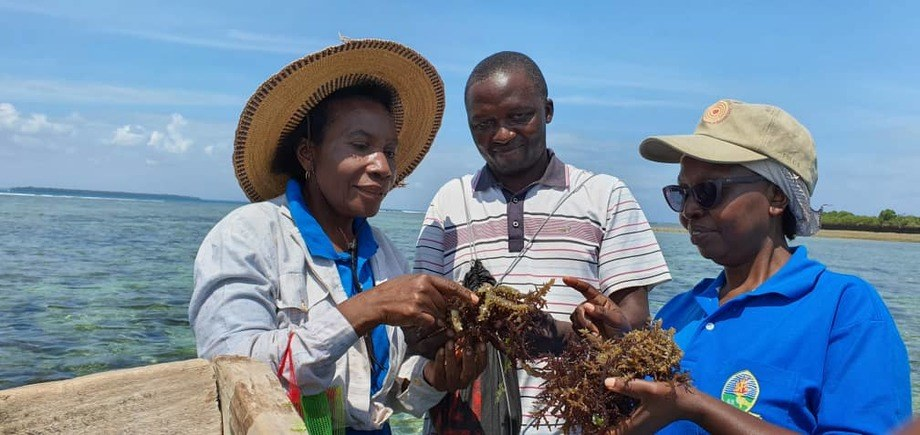 Dr Flower Msuya (left) will address a UN meeting today on the importance of seaweed farming